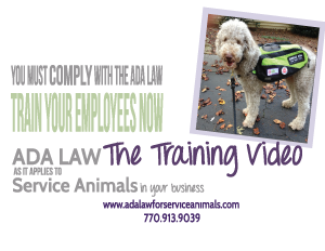 ADA Law for Service Animals- The Training Video